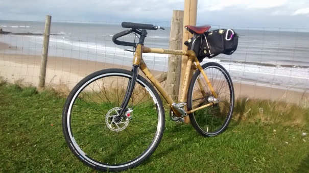 Finished bamboo bike
